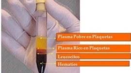Bioestimulación Cutánea